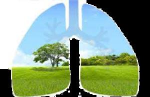 ozono-maquinas-purificadora